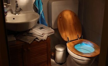 One-Piece vs. Two-Piece Toilets: Which One Should You Get?