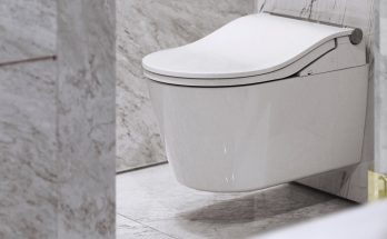 American Standard vs. Toto: Which of the Two Brands Is Better?