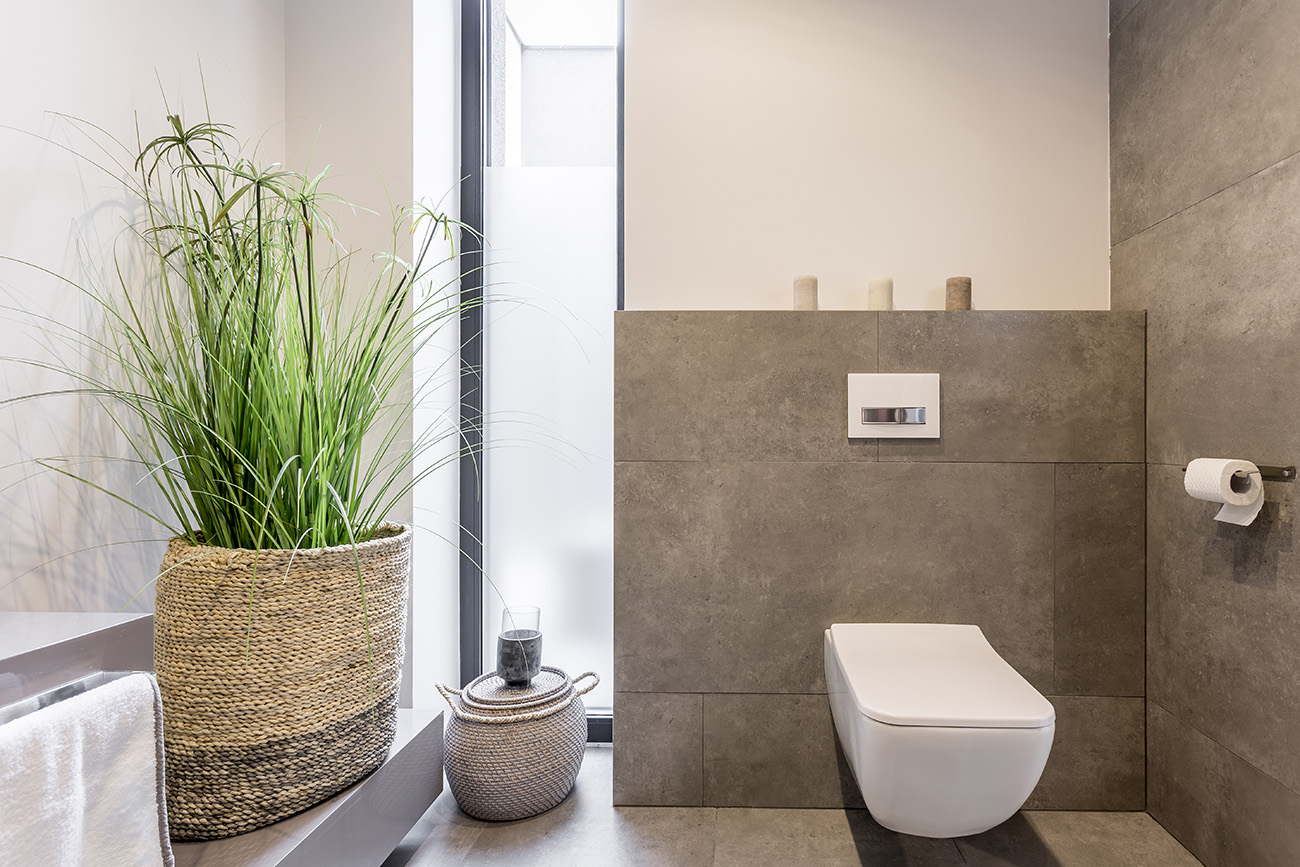 Wall-Hung vs. Floor-Mounted Toilet: Which One to Choose?