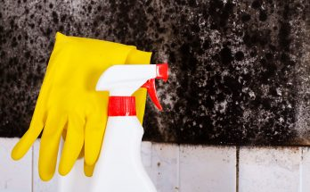 How to Remove Mold from Shower Caulk