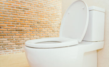 Best Round Toilets