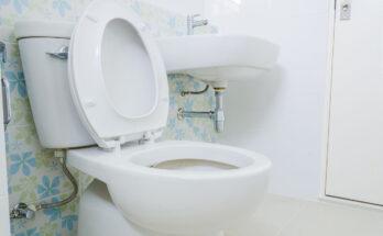 Best Two-Piece Toilets