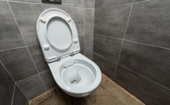 Best Slow Close Toilet Seats